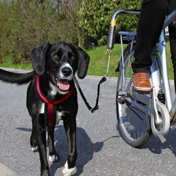 Biker-Set Deluxe von Trixie Hunde Abstandhalter Fahrrad