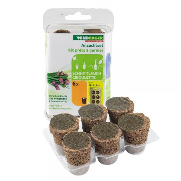 ANZUCHTSET Schnittlauch 6 Stück Windhager Pflanzen Anzucht Gemüse
