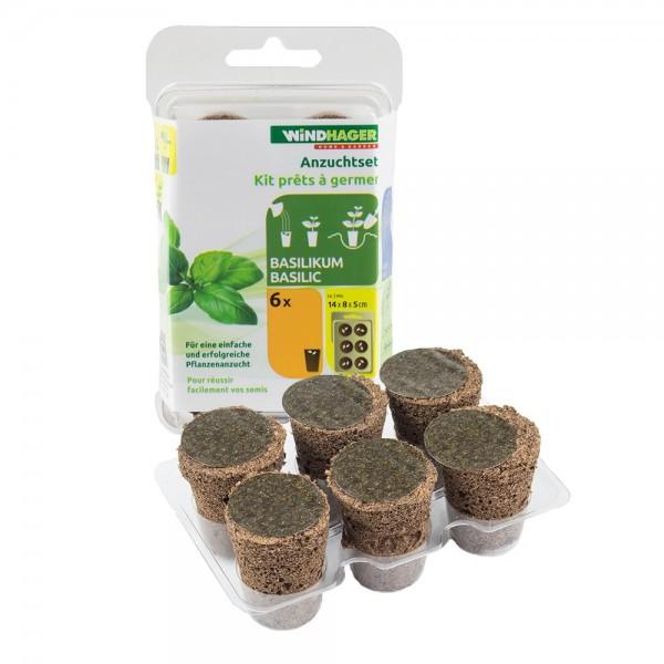ANZUCHTSET Basilikum 6 Stück Windhager Pflanzen Anzucht Gemüse